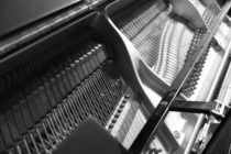 遅咲きの若きピアニスト シャルル・リシャール=アムラン特集(1)