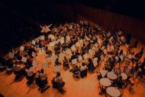 社会人の私が『市民オーケストラ』に入るためにしてきたこと。