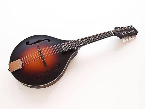 EASTMAN Guitar